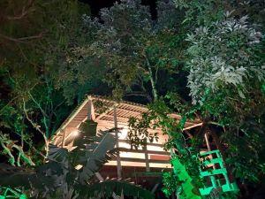 Pirenópolis ganha primeira casa na árvore para hospedagem