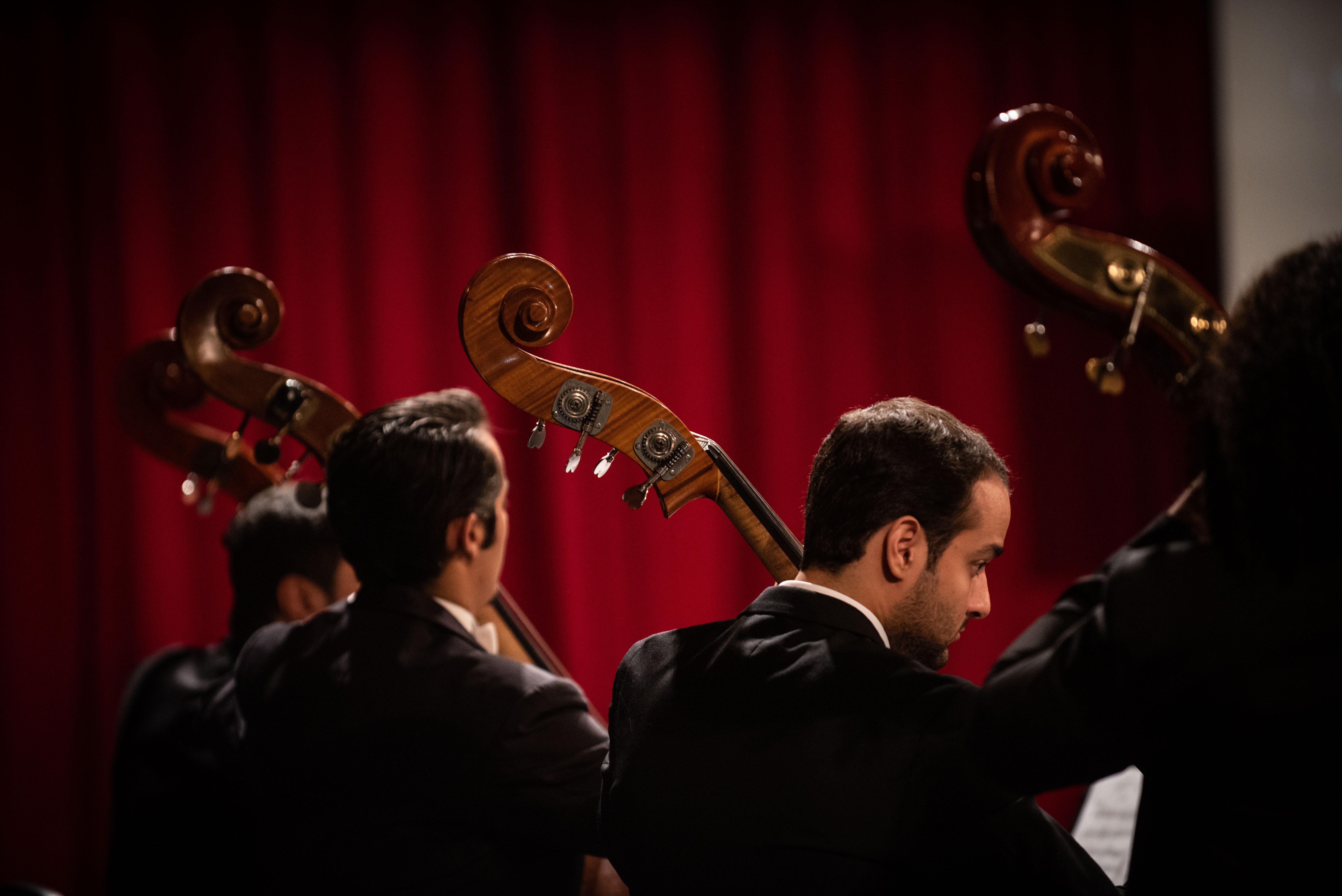 Filarmônica de Goiás apresenta concerto para cordas