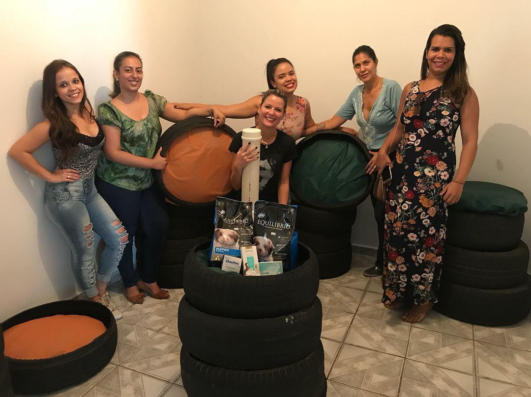 OAB Goiás lança campanha 'Cãominhas' para o inverno